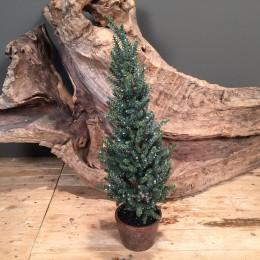 Χριστουγεννιάτικο Δέντρο Slim Plastic Κρυσταλλάκια Παγωμένο 60εκ Χ