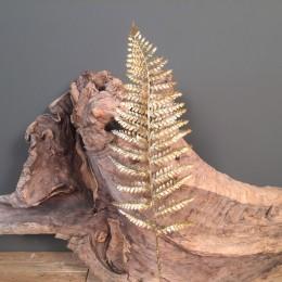 Διακοσμητικό Κλαδί Χρυσό Τροπικό Φύλλο Φτέρη 95εκ