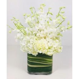 Σύνθεση Γυάλα Τετράγωνη Πράσινο Φύλλο Λευκές Ορτανσίες Ορχιδέες