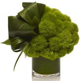 Σύνθεση Γυάλα Κυλινδρική Πράσινα Φύλλα & Greene Trick