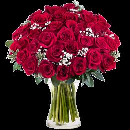 Μπουκέτο Τριαντάφυλλα Κόκκινα 35τμχ Γυψοφύλλη Πρασινάδα