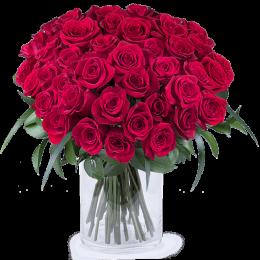 Μπουκέτο Τριαντάφυλλα Κόκκινα 50τμχ Λεπτομέρεια Πρασινάδας