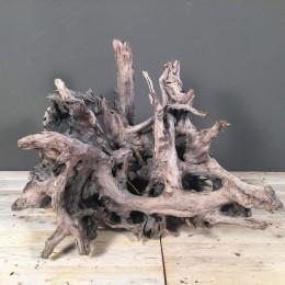 Ξύλινη Ρίζα Δέντρου
